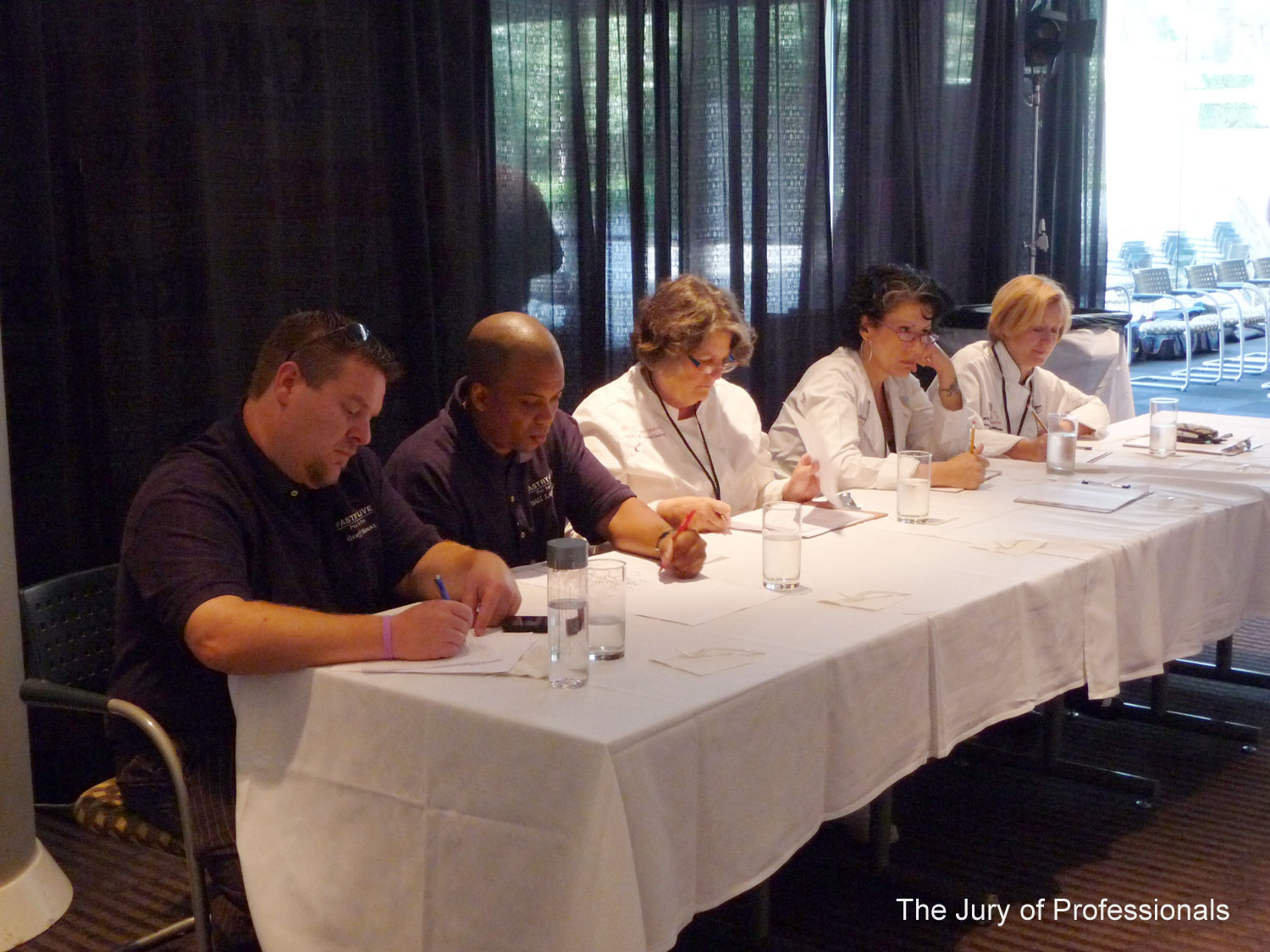 The Jury of Professionals
