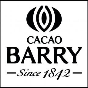 Cacao Barry Logo Black_3